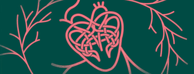 Heart Health Hub Promo Assets A Celtic knot that makes a heart with arteries and veins ties love connections intricate complex