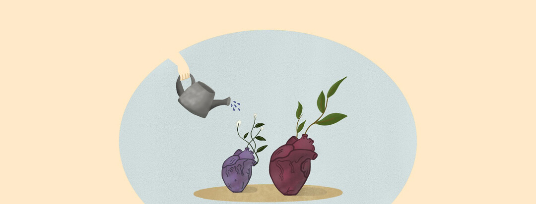A hand coming in from the left side watering plants growing from anatomical heart vases
