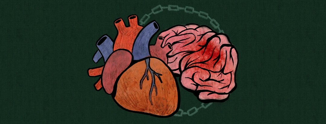 Anatomical heart and brain with a blood clot are linked together with a chain, stroke